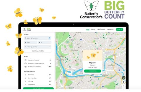 Join the Big Butterfly Count