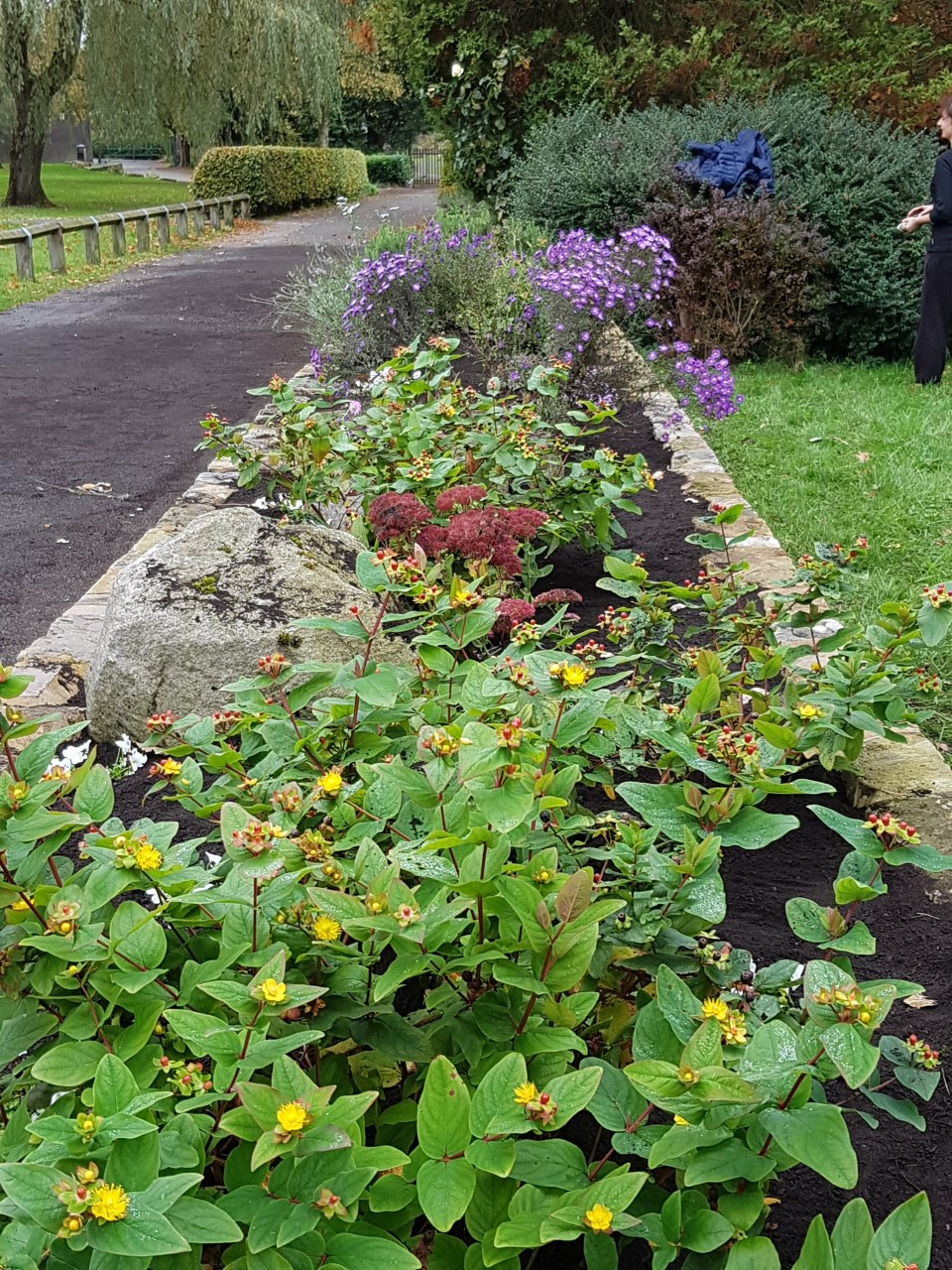 Flower beds at Longsight Park