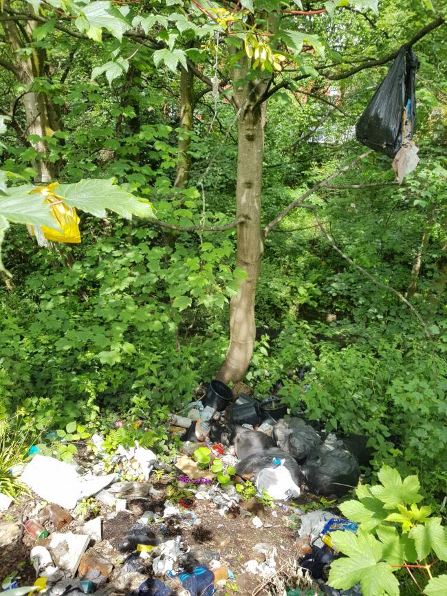 Cleaning up fly-tipping hotspot