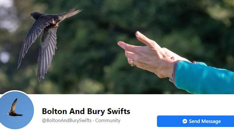 Feedback on BGU donation, Swifts
